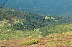 唯一俯视Svydovets土坎的房子和绿色牧场地 库存照片