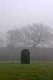唯一墓碑在一个鬼的坟园 库存照片
