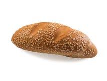 唯一小圆面包用芝麻 免版税库存图片