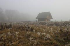 唯一木小屋在有薄雾的早晨 库存图片