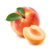 唯一桃子,杏子一半隔绝在白色背景 免版税库存图片