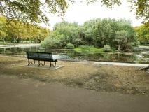 唯一椅子在公园 图库摄影