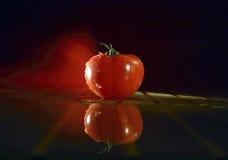唯一照明设备的蕃茄 库存图片