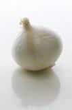 唯一的大蒜 库存图片