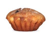 唯一的杯形蛋糕 库存图片