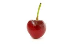 唯一的樱桃 库存照片