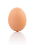 唯一的红皮蛋 免版税库存图片