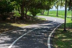 唯一的自行车在公园 库存图片
