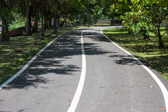 唯一的自行车在公园 免版税图库摄影