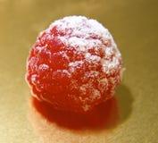唯一的莓 库存图片