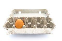 唯一的鸡蛋 免版税图库摄影