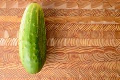 唯一的黄瓜 免版税库存图片