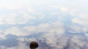 唯一石头在与反射的云彩的镇静水中 库存照片
