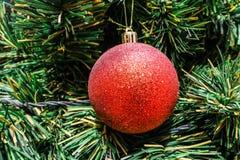 唯一红色圣诞节树装饰特写镜头  图库摄影