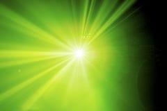 唯一鲜绿色的阶段光 免版税库存图片