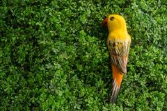 唱歌在树的黄色陶瓷鸟 图库摄影