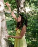 唱歌对结构树的若虫 库存图片