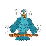 唱歌小的滑稽的鸟 库存照片