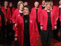 唱歌的听众 免版税库存图片