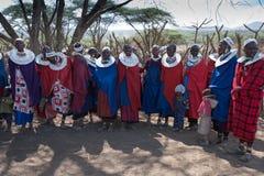 唱歌的马塞人妇女。 免版税库存照片