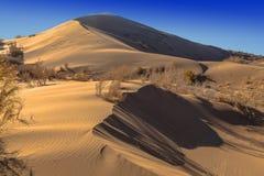 唱歌barkhan在国家级自然保护区Altyn Emel 免版税库存照片
