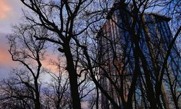 商业中心区  玻璃摩天大楼门面 Kyiv市,乌克兰 街道外部 编译的现代办公室 都市图, l 免版税库存图片