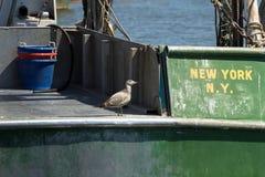 商业捕鱼业小船在Belford,新泽西 免版税库存照片