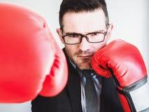 商人和红色拳击手套 库存照片