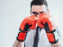 商人和红色拳击手套 免版税库存照片