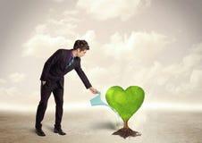 商人浇灌的心形的绿色树 免版税库存图片