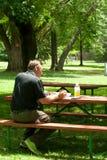 商人随便穿戴的学习在公园 免版税库存图片