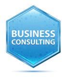 商务咨询水晶蓝色六角形按钮 库存例证