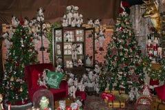 商店内部在有大圣诞树和装饰的阿雷佐 库存照片