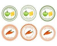 商标南瓜和红萝卜设计元素包裹 免版税库存图片