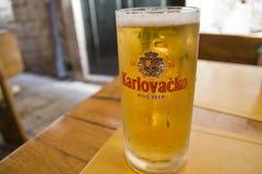 啤酒克罗地亚人 库存照片