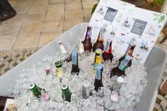 啤酒各种各样的品牌在大冰桶的 库存照片