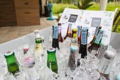 啤酒各种各样的品牌在大冰桶的 库存图片
