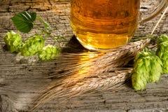啤酒和原材料啤酒生产的 免版税库存照片