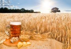 啤酒和快餐在背景麦田 库存照片