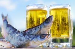 啤酒和快餐对啤酒 免版税库存照片