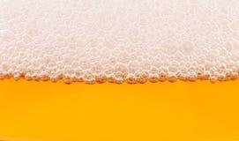 啤酒和泡沫特写镜头。 库存照片