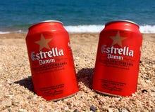 啤酒和海 免版税库存照片
