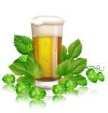啤酒和蛇麻草 图库摄影