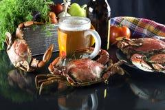 啤酒和螃蟹 库存照片