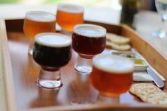啤酒品尝盛肉盘 库存照片