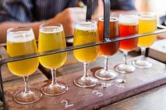 啤酒品尝 免版税图库摄影