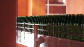 啤酒在工厂的生产线 关闭有酒精瓶的传送带 股票视频