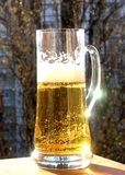 啤酒大玻璃 免版税图库摄影
