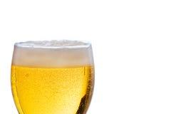 啤酒寒冷刷新 免版税库存照片