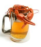 啤酒小龙虾杯子 免版税图库摄影